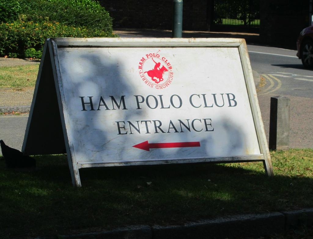 Polo01 copy