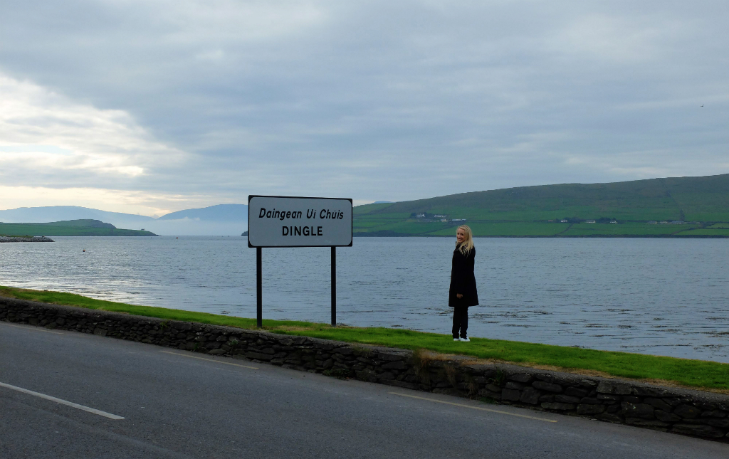 Dingle00Sign