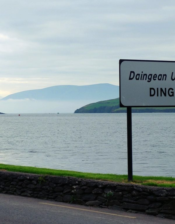 Five Things to Do in Dingle