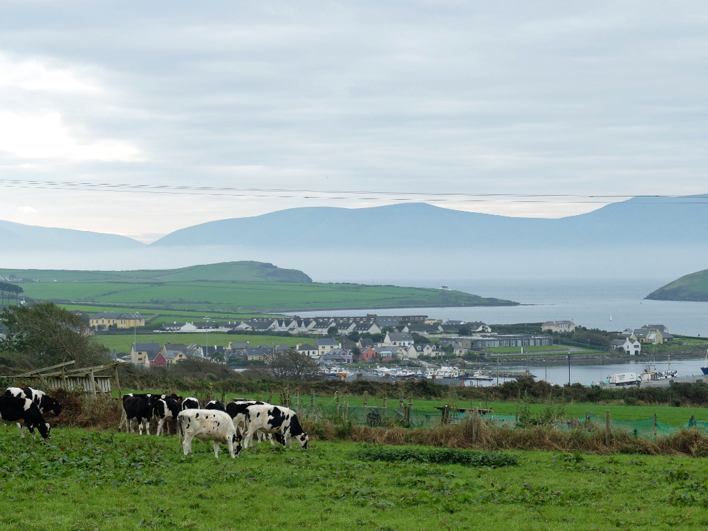 Dingle06View