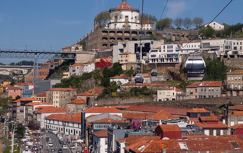 Olivia Leaves | Porto