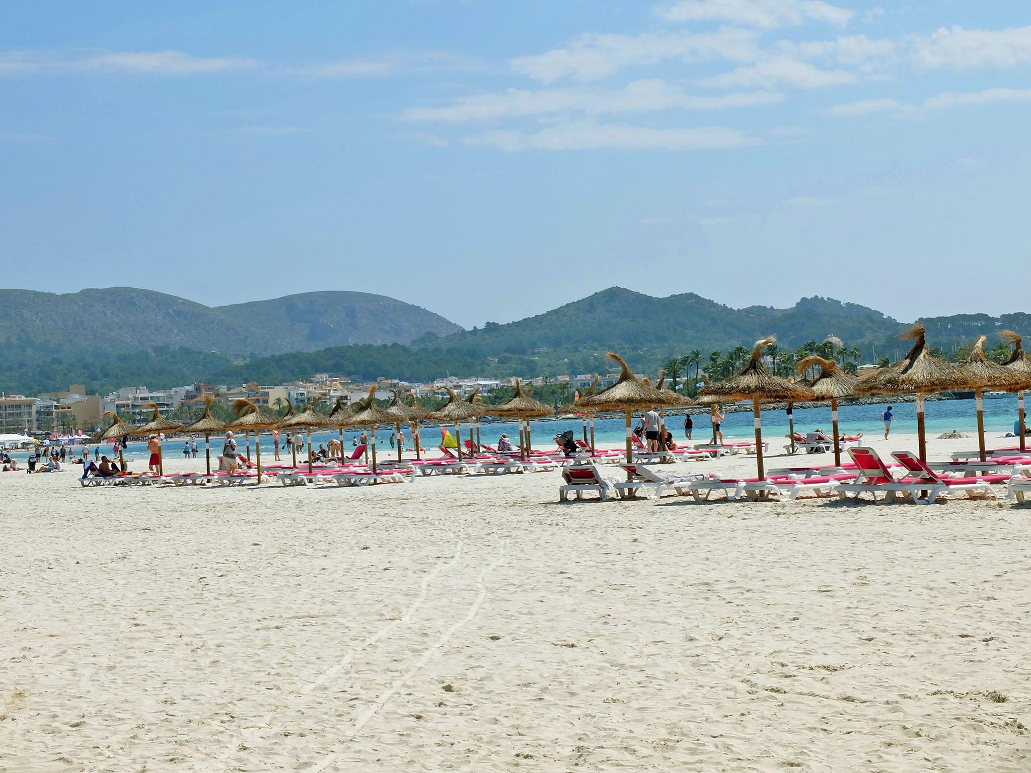Olivia Leaves | Visit Mallorca